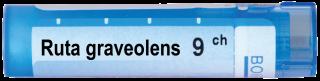 RUTA GRAVEOLENS   9CН