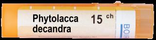 PHYTOLLACA DECANDRA 15CH