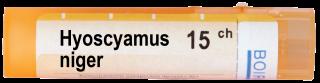 HYOSCYAMUS NIGER 15CH