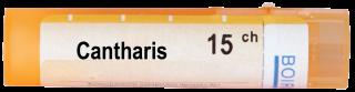 CANTHARIS 15СН
