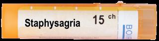 STAPHYSAGRIA 15CH