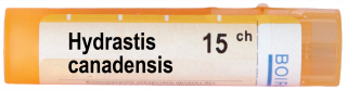 HYDRASTIS CANADENSIS 15CH