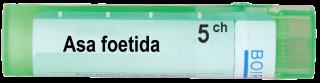 ASA FOETIDA 5CH