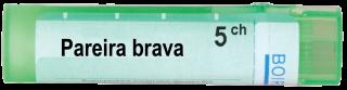PAREIRA BRAVA 5CH