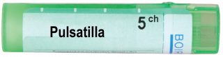 PULSATILLA 5CH