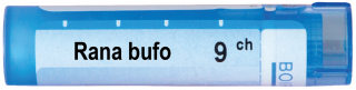 RANA BUFO 9 CH