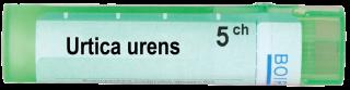 URTICA URENS 5CH