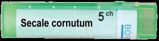 SECALE CORNUTUM 5 CH