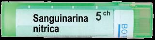 SANGUINARIA NITRICA 5 CH
