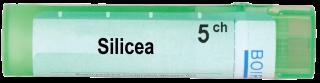 SILICEA 5CH