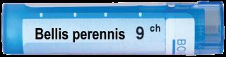 BELLIS PERENIS 9 CH